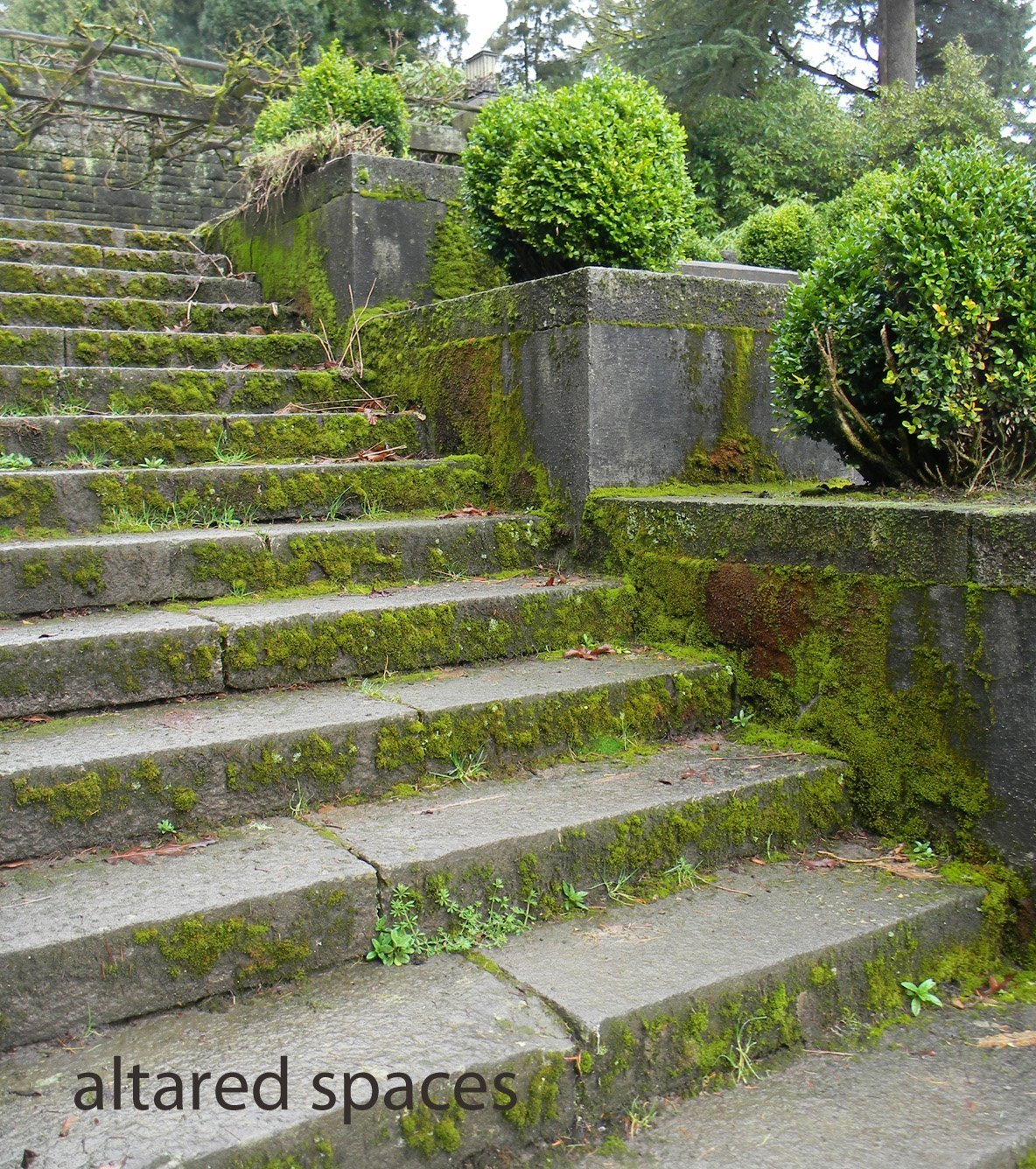 stone stairs with moss